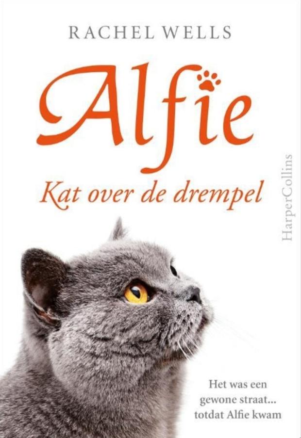 Alfie 1.jpg