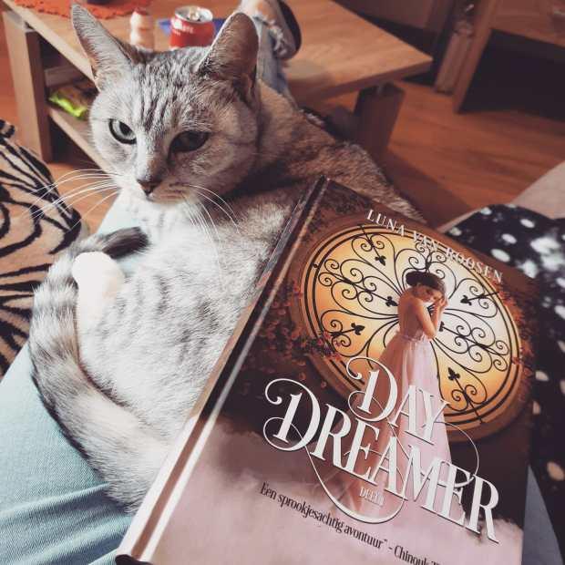 Day Dreamer 2