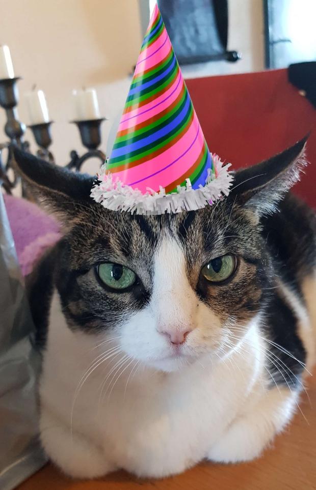 Birthday bobbie