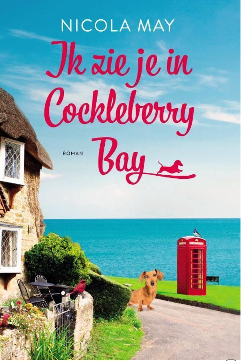 Ik zie je in Cockleberry Bay - kaft